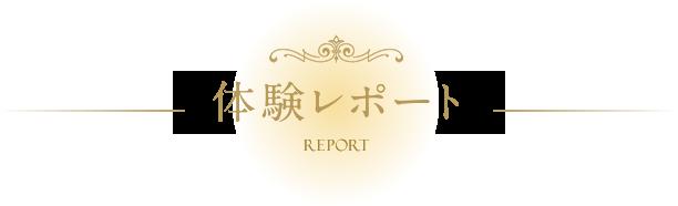 体験レポート